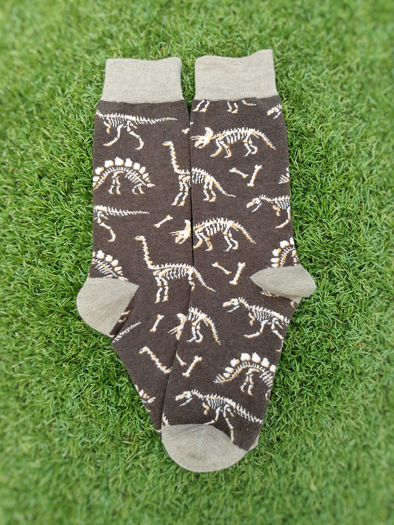 Dinosaur Skeleton Socks
